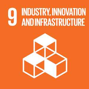 SDG9-icon